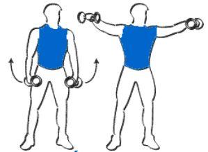 Exercice bras fermes L'élévation latérale